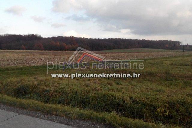 Land, 5557 m2, For Sale, Sveti Ivan Zelina - Bukevje
