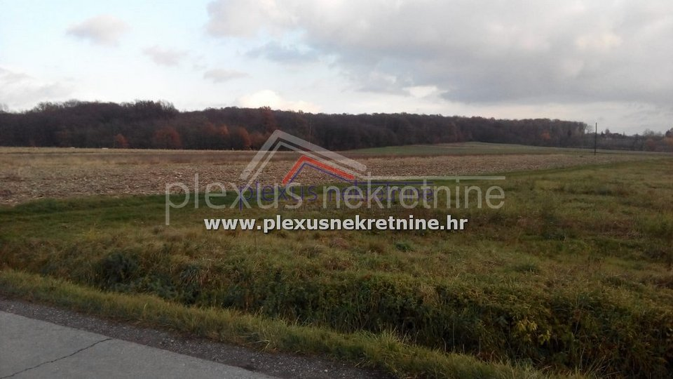 Land, 5557 m2, For Sale, Sveti Ivan Zelina - Bukevje