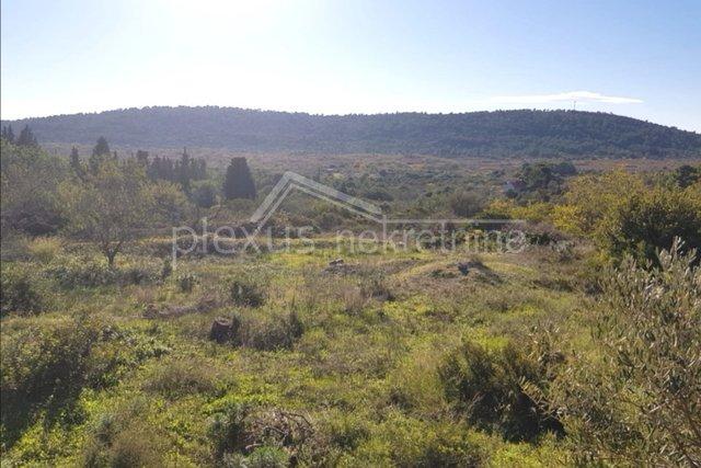 Land, 1000 m2, For Sale, Šolta - Srednje Selo