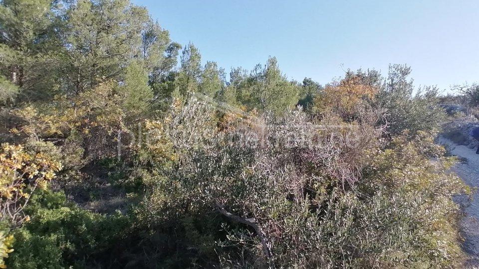 Land, 12000 m2, For Sale, Supetar