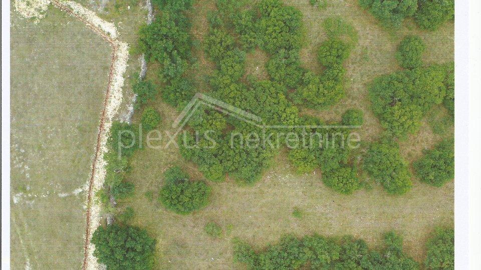 Land, 13459 m2, For Sale, Unešić