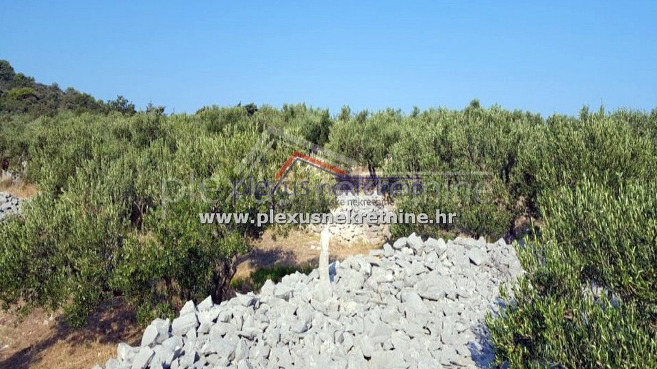 Land, 4528 m2, For Sale, Povlja