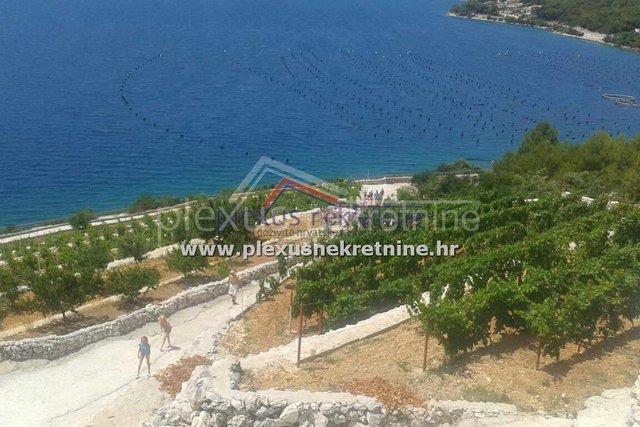 Estate, 7000 m2, For Sale, Marina - Poljica
