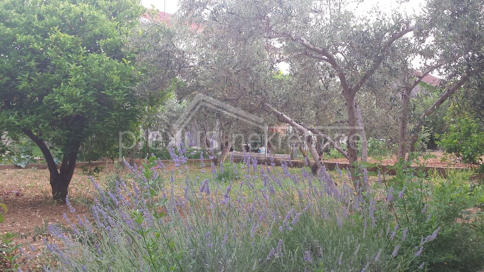 Obiteljska kuća s vrtom: Trogir, 96 m2