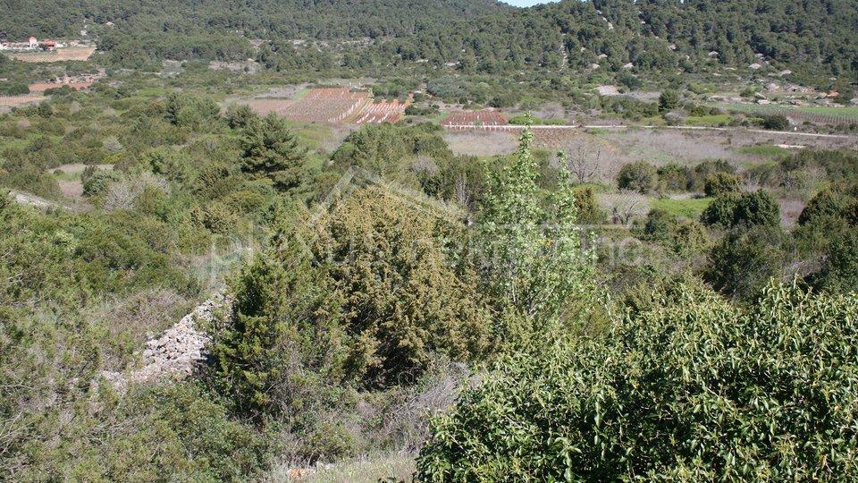 Land, 4105 m2, For Sale, Vis - Marinje Zemlje
