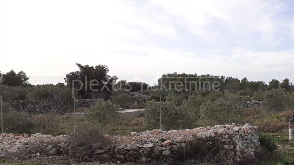 Land, 2635 m2, For Sale, Šolta - Gornje Selo